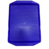 Поднос пластиковый (42х30) голубой